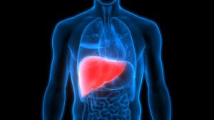5 Tips For Liver Health
